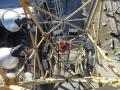 rescate-en-torre-grua-8
